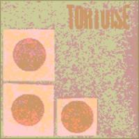 album Tortoise